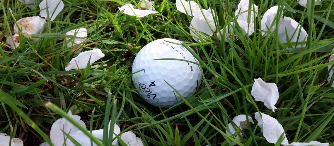 Tipps fürs Testament vom Pro Golf GENAPLAN